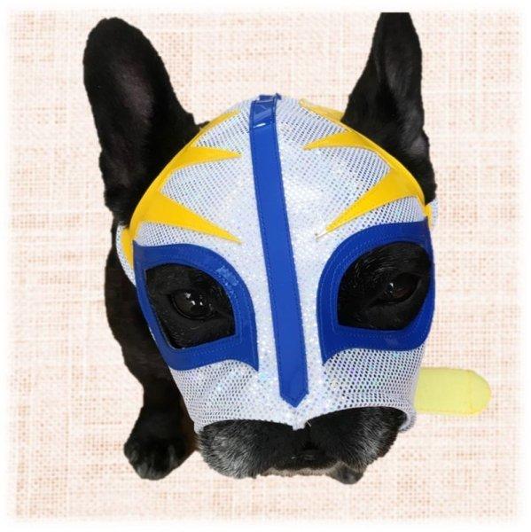 画像1: ワンコ用プロレスマスク ワンコレスラー ホワイト (1)